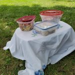 4th of July Quarantine Menu - picnic setup